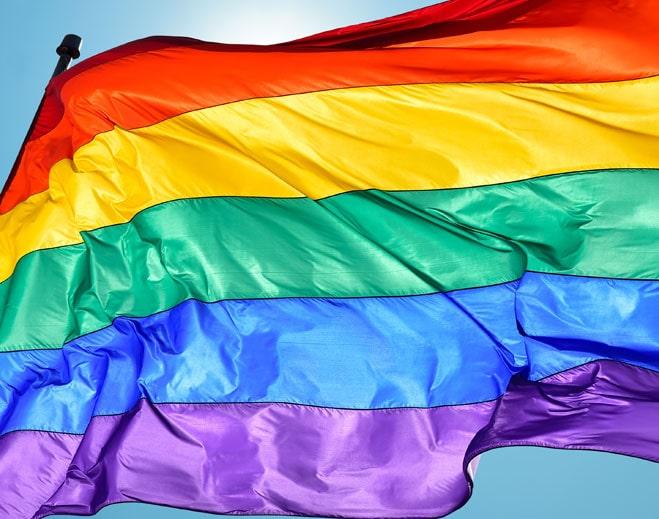 659x519Pride-Flag-min